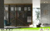 Conception artistique porte de l'armoire Vente chaude Armoire porte