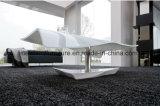 Meubles en verre de salle de séjour de la table basse (TB-S110)