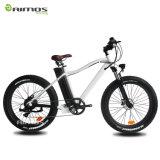 2017 bici eléctrica gorda eléctrica popular de 350W 500W 1000W
