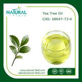 Óleo de árvore de chá puro com óleo essencial de alta qualidade