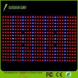 Hydroponic SMD LED 플랜트 빛 450W 가득 차있는 스펙트럼은 빛을 증가한다