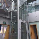 Строя малая селитебная домашняя фабрика подъема лифта пассажира гостиницы
