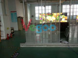 P6 Semi-Outdoor Full Color Transparent LED Screen Display