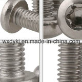 Vite di protezione capa rotonda dello zoccolo dell'azionamento Torx A2-70 dell'acciaio inossidabile 304