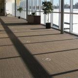 De Opgeheven Vloer van de Dekking van het tapijt Bureau