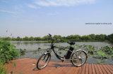 """24 """" электрических Bike с батареей лития 36V (CB-24M01)"""