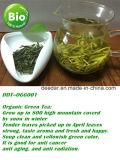 Tè verde della neve organica