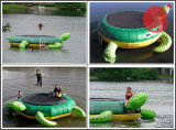 Het nieuwe Ontwerp Opgeblazen Drijvende Spel/de Ladder van de Sport van het Water (T12-014)