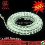 높은 루멘 60LEDs는 실내와 옥외 훈장을%s 백색 LED SMD2835 지구 빛을 데운다