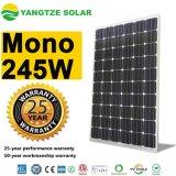 단청 태양 전지판 25 년 보장 240W 245W PV