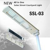 IP65 a bon marché intégré tous dans un réverbère solaire 12W