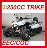 Motocyclette à bas prix EEC 250cc 3 roues Mc-380