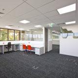 Teppich-Deckel-Büro angehobener Fußboden