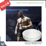 99% Reinheit fettes Cypionate Steroid Puder Boldenone Cypionate für Bodybuilding