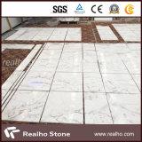 Losa de mármol blanca de Volakas de la galaxia de Bianco nueva para la decoración del suelo