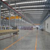 Costruzione prefabbricata della struttura d'acciaio di basso costo con il prezzo poco costoso