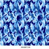 Película de la impresión de la transferencia del agua, No. hidrográfico del item de la película: B41zzd186A