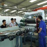 Ligne en plastique d'extrusion de panneau de feuille d'extrudeuse en plastique (KF800)
