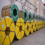 De Rol van het roestvrij staal met de Test van BV