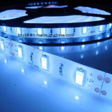 Blanco SMD 5630 60LEDs / M LED Strip
