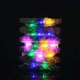 10/20/30/40의 LED 램프 구리 철사 나비 모양 끈 요전같은 빛 크리스마스 결혼식