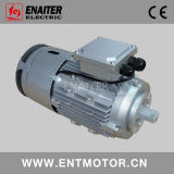 Elektrische Motor met Reach rem en thermische beveiliging