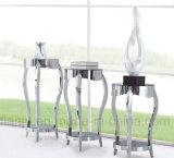 Support de plante de meuble en acier inoxydable moderne en acier inoxydable (DF1002)