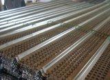 La Cina ha galvanizzato l'alta fabbrica costolata della cassaforma