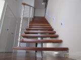 Paso de progresión de la escalera de la escalera de cristal recta/de madera sólida