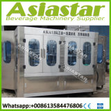 L'eau minérale de empaquetage d'usine de l'eau complètement automatique produisant le matériel