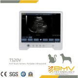 Diagnosen-Ultraschall-Scanner des Modus-2b beweglicher (Tierarzt Touchscan20)
