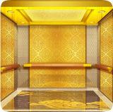 Panneau décoratif de plafonnier d'ascenseur d'acier inoxydable gravure
