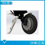 脂肪質のタイヤのディスクブレーキを折る36V多色刷りの電気バイク