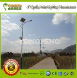 Indicatore luminoso di via solare di qualità