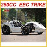 Der Trike Roadster Ztr 250cc von der EG gebilligt