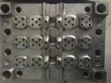 El molde/el molde/el moldeado/el moldear de la alta precisión de la fabricación/mueren