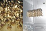 Het Aansteken van de Tegenhangers van de Lamp van de Kroonluchter van het glas (SL29174-12)