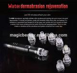 1개의 물 Dermabrasion 껍질을 벗김 기계 피부 관리 제품에 대하여 도매 3