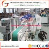 PVC 물개 지구 생산 Line/PVC 밀봉 여행 밀어남 선