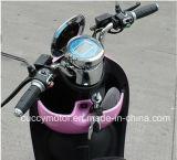 Motorino elettrico moderno di qualità 500W 1000W per gli adolescenti & le donne (nuovo scarabeo - Voque)