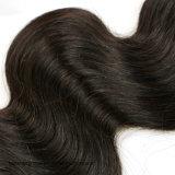 Hochwertiges Jungfrau-brasilianisches Haar-Webart-Karosserien-Wellen-Doppelt-einschlaghaar-Webart