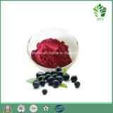強力な酸化防止剤の有機性Acaiの果実の粉かAcaiの果実の粉のエキス