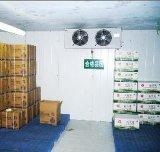 Congeladores de ráfaga industriales