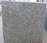 El granito gris claro embaldosa el suelo