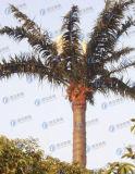 De duurzame Gecamoufleerde Toren van de Telecommunicatie van de Kokospalm