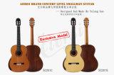 Estrutura profissional que apoia a guitarra clássica de Smallman da parte traseira redonda