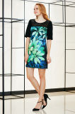 Blumen-Plazierungs-Drucken-Schaltkleid mit Spitze York