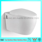 Il fornitore della Cina Parete-Ha appeso il fornitore dei montaggi della stanza da bagno della toletta