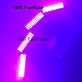 Tinta UV da microplaqueta do diodo emissor de luz que cura a lâmpada 100W