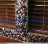 Естественная мать мозаики перлы